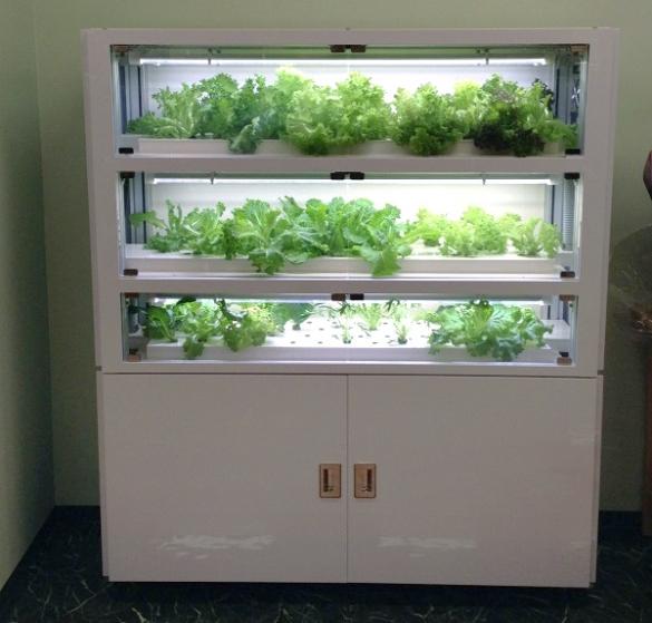 Шкаф для выращивания трав