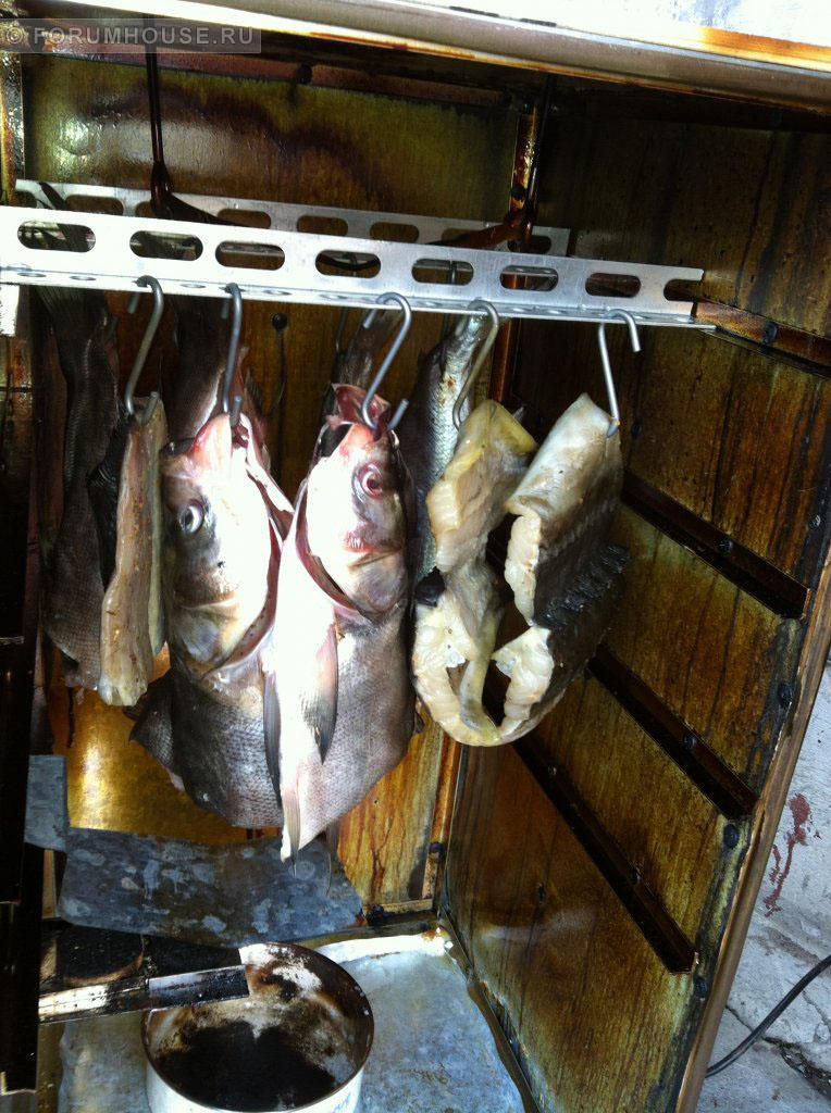 Как коптить рыбу своими руками 525
