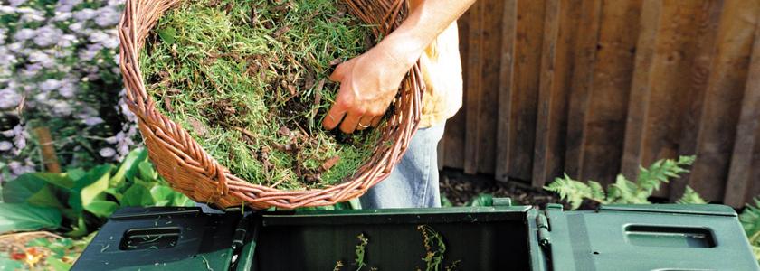 Шесть правил хорошего компоста