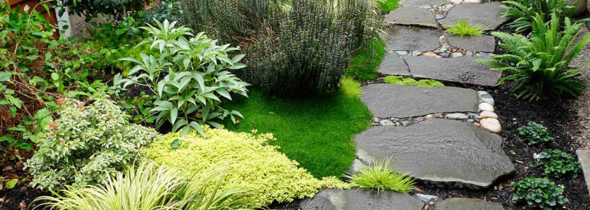 Садовые дорожки: популярные решения, технология укладки