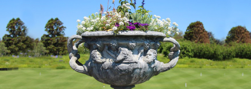Британская ваза в вашем саду