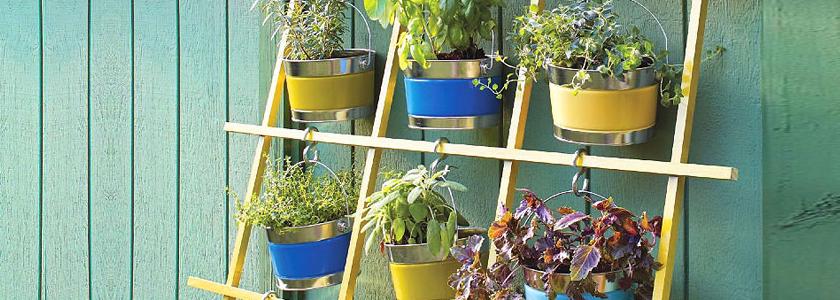Сад «крестики-нолики»