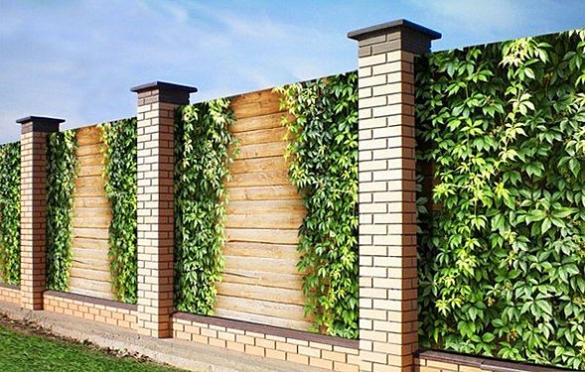 декоративная сетка на забор фото