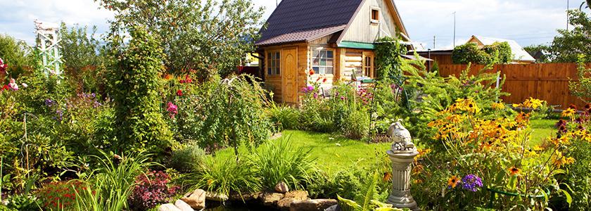 Обустройство летней дачи: строим и живем с комфортом