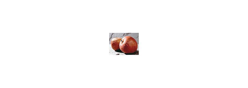 Почему болеют яблоки?