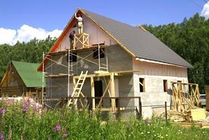 Белка строит каркасный дом