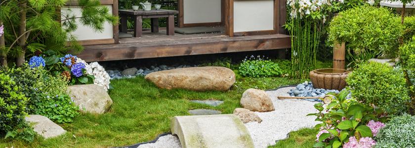 Растения японского сада на вашей даче