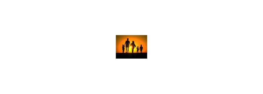 «Бумажный журавлик» или Дом-Дуплекс