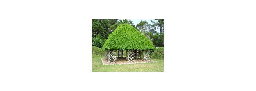 Искусство сплетать столбы: и садовый декор, и жилье