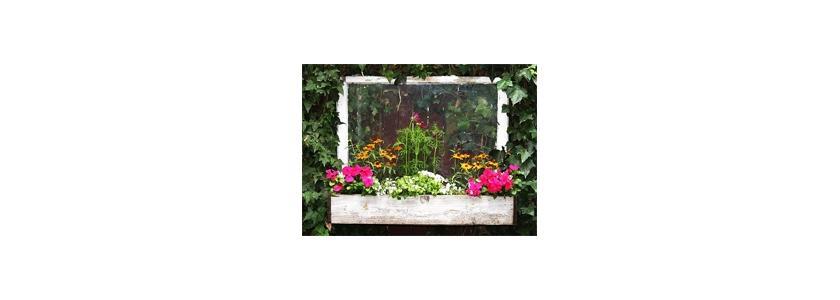 Из старого окна – цветник