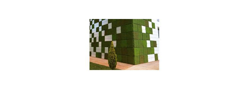 Плитка «Живая стена»: вертикальный сад на доме