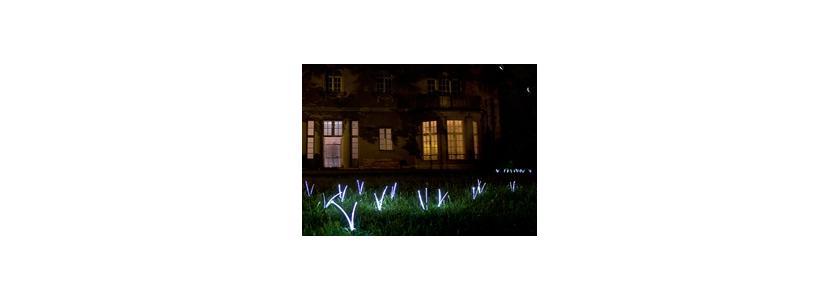 «Растущий свет» – оригинальный проект для освещения сада