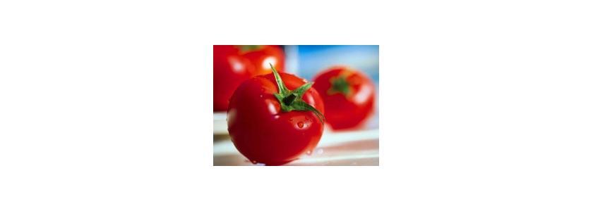 Составлен рейтинг самых полезных овощей и фруктов для осени