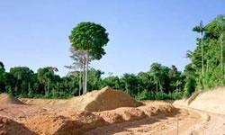 Земля и воля: что можно построить на своем земельном участке?
