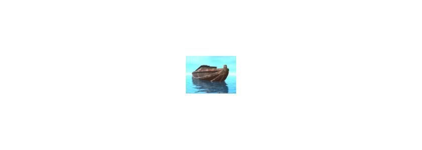 Дом «Ноев ковчег»