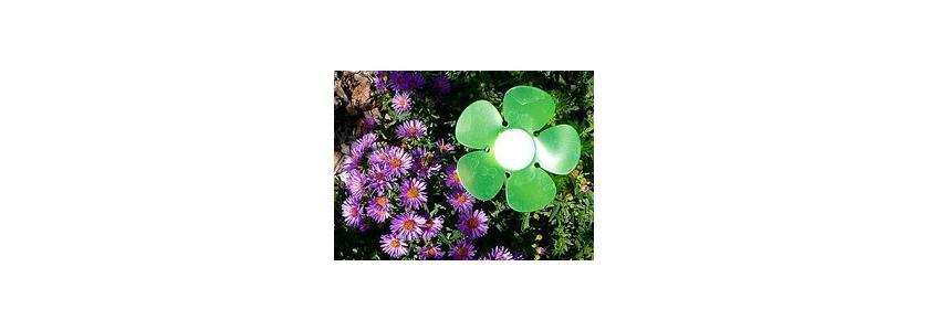 В помощь садоводам: «умный» цветок