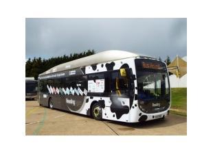 Автобус на навозе
