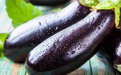 Выращиваем синенькие – как получить хороший урожай в любых условиях