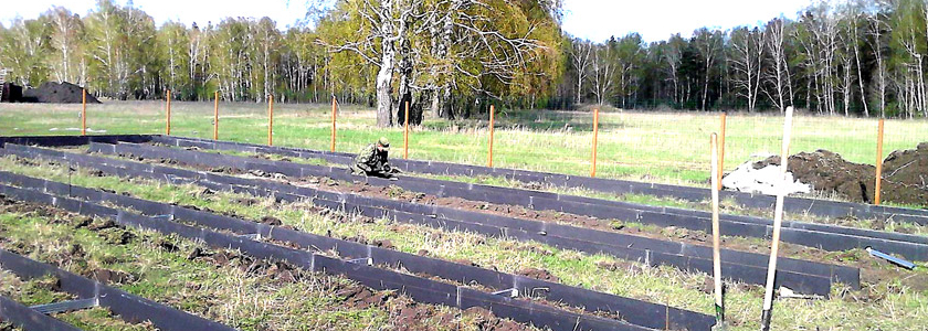 Шифер + СПК = урожайный виноград