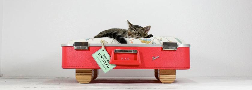 Чудесные превращения старого чемодана и телевизора