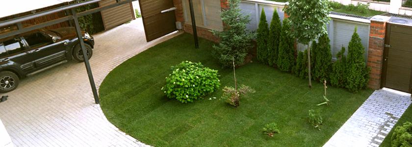 Зеленая лужайка перед домом. Все о газонах