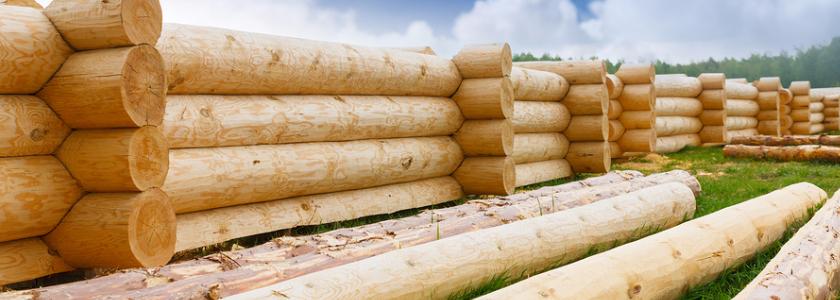 Средства для защиты древесины. Особенности выбора и применения