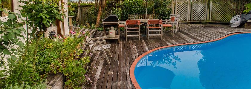 Какими растениями можно украсить бассейн
