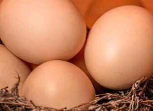 Как укрупнить куриное яйцо