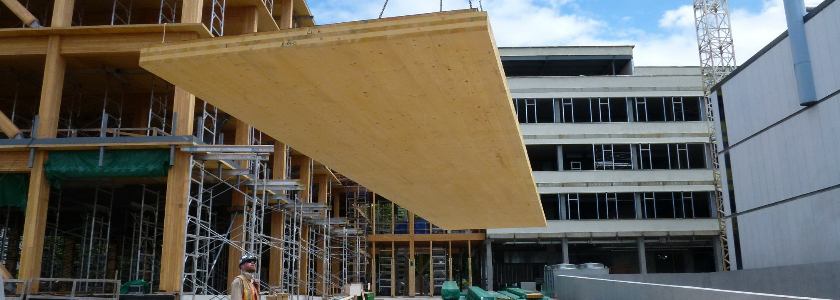 Панельные дома по каркасной технологии: зарубежный строительный опыт