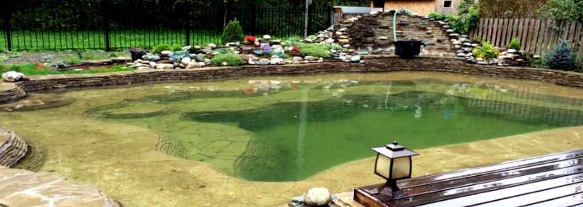 Каменный пруд – опыт строительства и эксплуатации от участника портала
