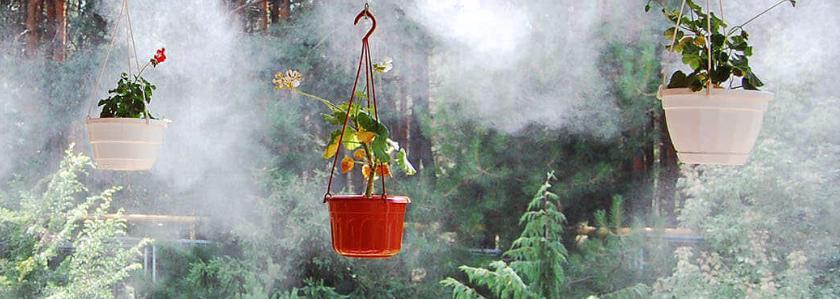 Система туманообразования для участка: что это? Рассказываем все о технологии