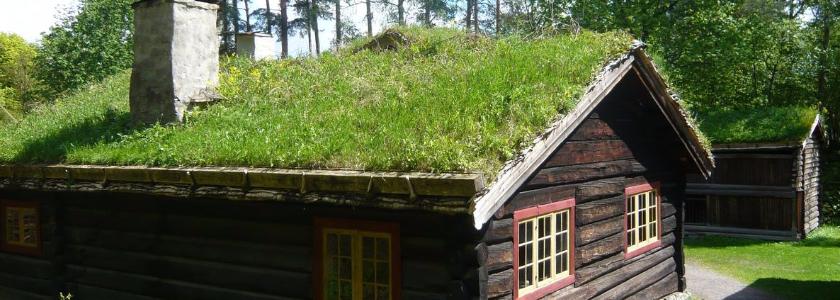 Трава на крыше