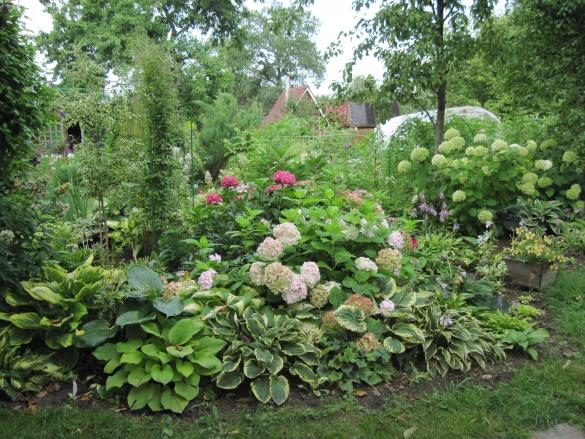 Схема рокария со списком растений 10