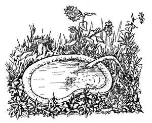 Водопровод на приусадебном участке - Инж