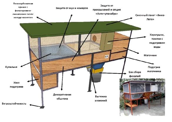Как выращивать нутрию в домашних условиях?