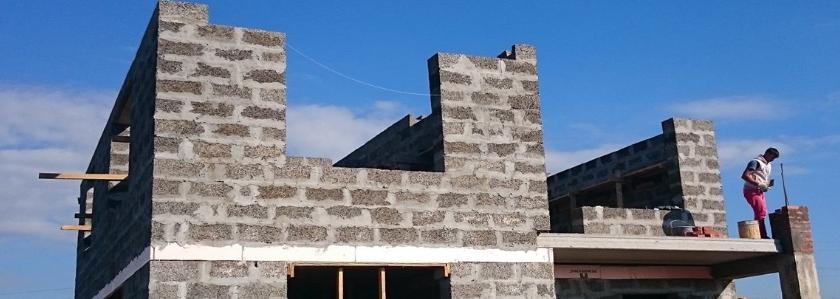 Из чего построить дом. Выбираем стеновой материал и учимся с ним работать