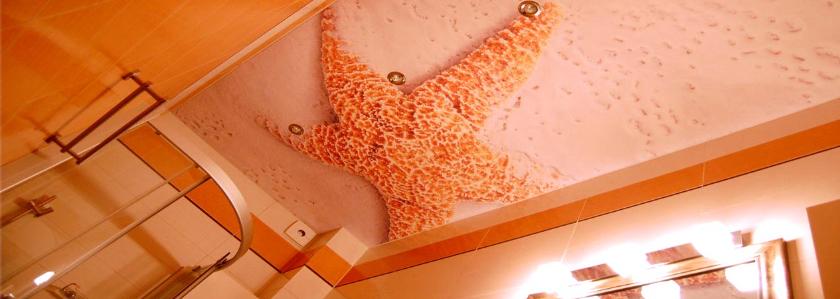 Потолок в ванной – обзор вариантов, нюансы выбора