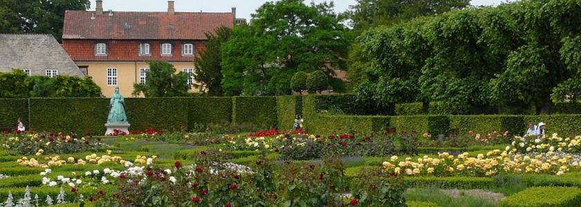 Украшаем сад цветущими кустарниками