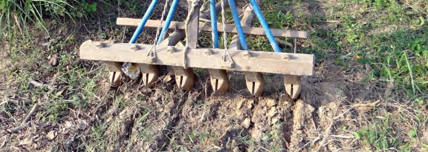 Овощные культуры - (посев семян и уход за рассадой)