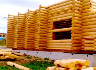 """Тест:  """"Какие строительные термины в деревянном домостроении вы знаете?"""""""