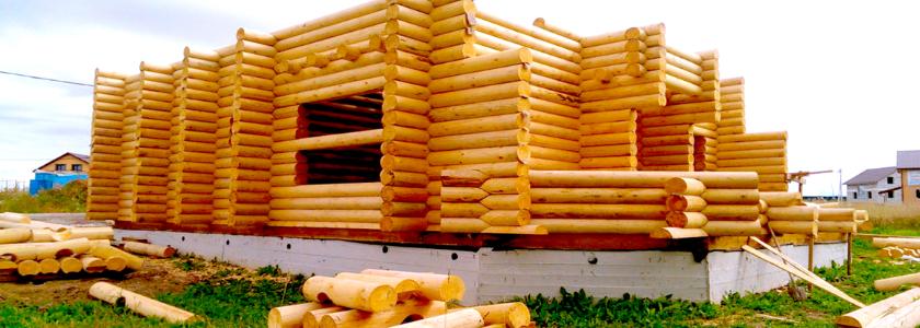 Какие строительные термины в деревянном домостроении вы знаете?