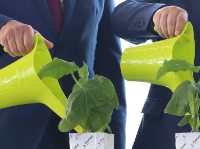 ROCKWOOLоткрывает первое в России производство субстратов