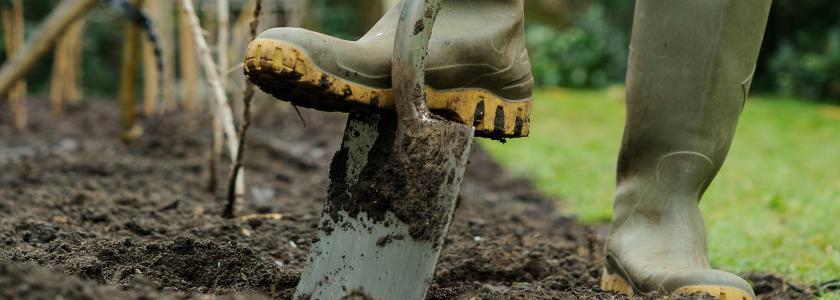 Правила подготовки газона к посеву и посев.