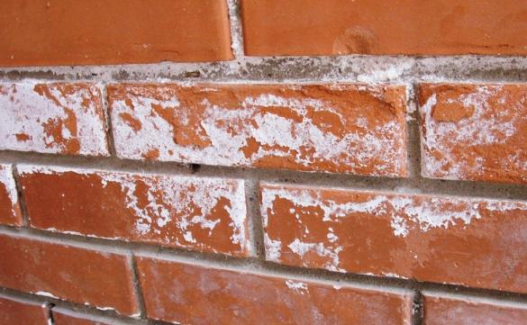 Фото высолы на кирпичном фасада