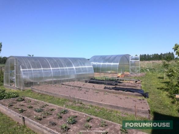 Фото огород: грядки и теплицы