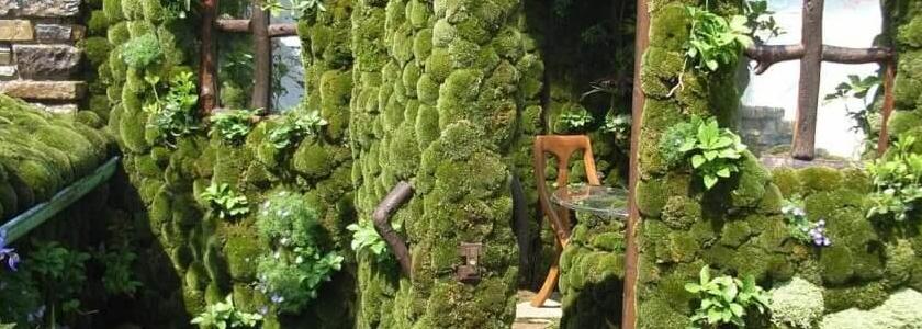 Японский садик на крыше