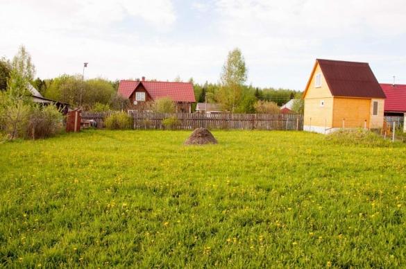 Появятся новые налоговые льготы для садоводов