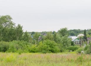 Кто сможет бесплатно получить земельные участки в Нижнем Новгороде?