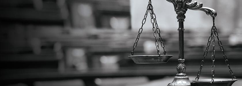 Закон или власть в Невском районе