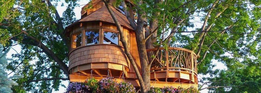 Следом за мечтой: дом на дереве